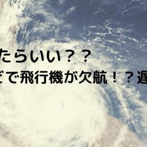 【トラブル】飛行機が台風などで遅延や欠航した!?どうしたらいい?対応や対策|振替?予約取り直し?保険は出るの?