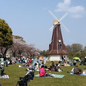 子育て家族・お花見満喫!都会の穴場スポット☆まるでヨーロッパの風景!風車の公園でピクニックはいかが♡♡浮間公園