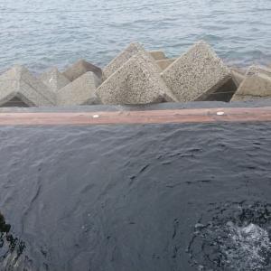 海にする?それとも温泉(´∀`) 小浜温泉 海上露天風呂 茜の湯 小浜市