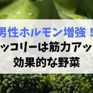 ブロッコリーで男性ホルモン増強!筋力アップに効果的な野菜