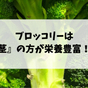 捨ててない?実はブロッコリーは茎の方が栄養豊富