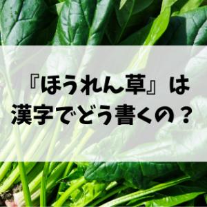 意外と知らない「ほうれん草」って漢字ではどう書く?
