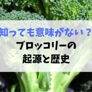 実はあの野菜と同じ仲間?ブロッコリーの起源と歴史