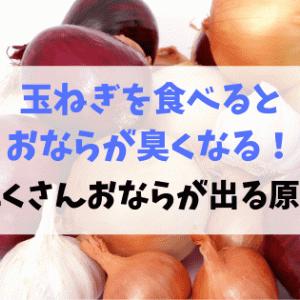 玉ねぎを食べるとおならが臭くなる!おならがたくさん出る原因