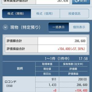 夏のディールで総資産100万円を目指します!