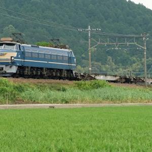 21年6月12日撮影 (近江路を行くEF66-27号機、74レ EF65PF国鉄色)