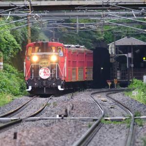 21年8月12日撮影 (嵯峨野トロッコ列車)