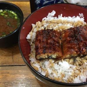 【500円台ランチ】ワンコインのうな丼! 名代 宇奈とと 神田店