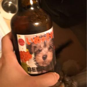 うちの犬がビールのラベルに。記念日を祝う選択肢に「フォトビー」を試してみる!