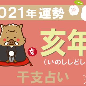 【干支占い】亥年(いのししどし)の2021年の運勢