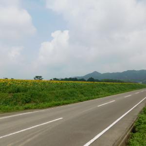日曜日の写真館★香川県まんのう町★ひまわり畑はまるで北海道の景色でした