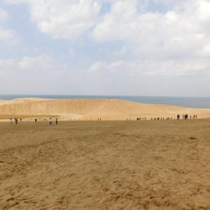 日曜日の写真館★鳥取で砂丘とらっきょう畑見ました。