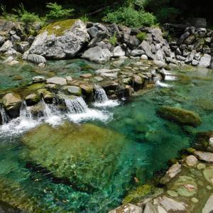 日曜日の写真館★仁淀川の上流で綺麗な水を見てきました。