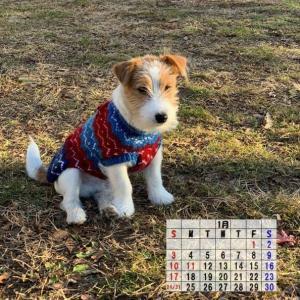 2021年 1月のカレンダー