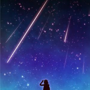 ふたご座流星群 流れ星ちょっとだけ観れましたよ☆