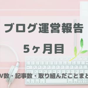 【はてなブログ運営報告】5ヶ月目のPV・記事数・取り組んだことまとめ