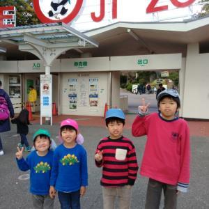 王子動物園へ