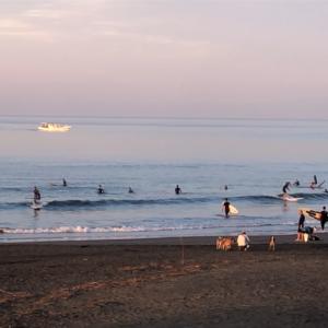 形良い小波、レフト・ライト共に楽しめます。波・ 湘南鵠沼 9/28