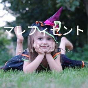 邪悪な妖精になった理由とは?映画「マレフィセント(あらすじ・感想)」母性を感じる作品です!