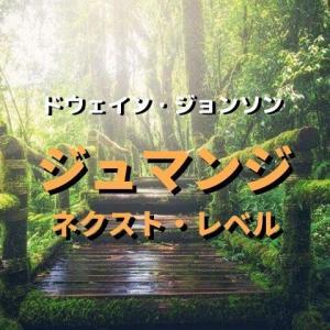 ドウェイン ジョンソンの面白すぎる冒険とは!映画「ジュマンジ2/ネクスト・レベル(あらすじ・感想)」