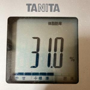 体脂肪率30%→25%!現在体脂肪率31.0%