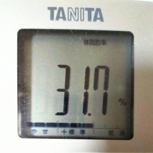 体脂肪率30%→25%!現在体脂肪率31.7%