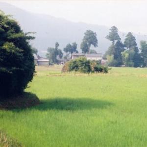 BUKUISHI9/14