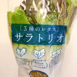 サラダ作りが劇的に楽になる「サラトリオ」