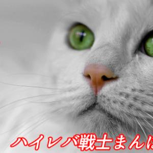 【海外FX】ミルトンマーケッツがデモコンテストを開催! 参加費無料で賞金5万円【完全ノーリスク】