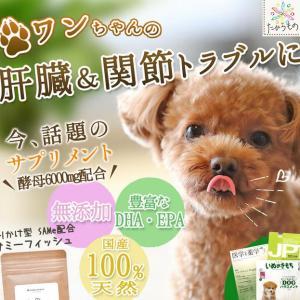 サミーフィッシュは犬の肝臓や腎臓に効果のあるサプリ?口コミは?