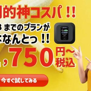 バナナWiFiは月300GBまで使える!料金も安い!口コミは?