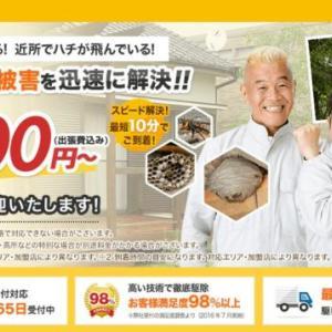 ハチ110番でスズメバチ駆除できる?アシナガバチやミツバチを退治?
