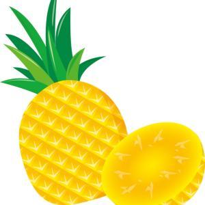 パイナップルはダイエットに効果的!美肌にも効果あり