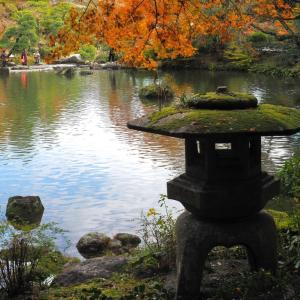 成田山公園の紅葉(3)