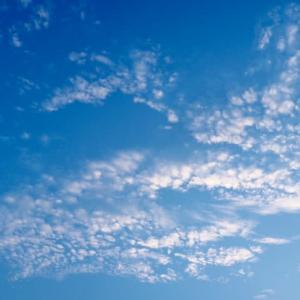 夏空キャンバス、雲の芸術