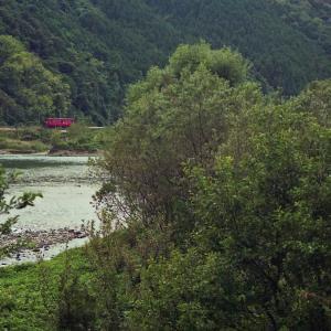心に沁みない、ナゲーのフーケー 1996年・名鉄谷汲線開業70周年