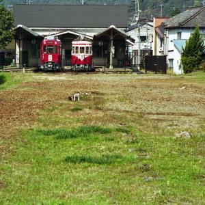 美濃町の不自由線・その後 廃線部分と存置線部分