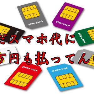 まだスマホ代に一万円も払ってんの? SIM cardに変えるべき理由 おすすめSIM card比較