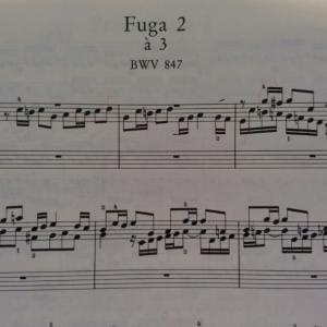アンドラーシュ・シフ『静寂から音楽が生まれる』より