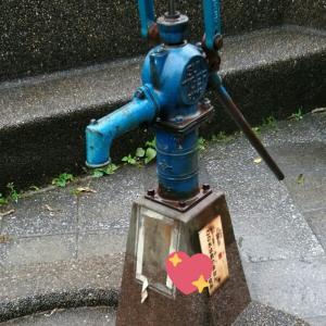井戸、見ぃ~っけ☆