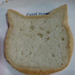 LE BIHAN ねこ食パンとアステル・彦星