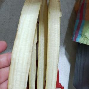 Banana fall down・・・(@_@;)