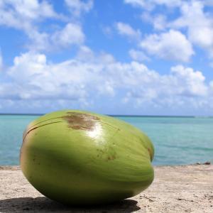 2019年夏休み旅行は南の島に決定!