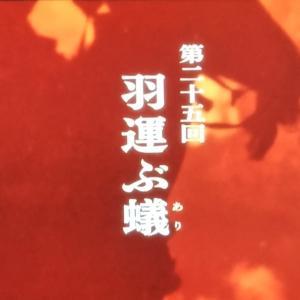 【麒麟がくる第25回】
