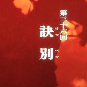 【麒麟がくる第36回】義昭と信長の間で板挟みの光秀がやりきれない回