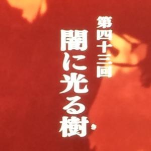 【麒麟がくる第43回】本能寺の変に新説!?帰蝶黒幕説を感じた回