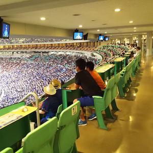 今年もナゴヤドームのプライムツインでDeNA対中日戦を観戦してきましたのでレポートします!【2019年9月15日】