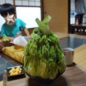 藤枝・真茶園のかき氷2020