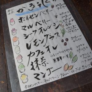 【ランチ再開&かき氷開始】藤枝・古民家カフェ ぶらり