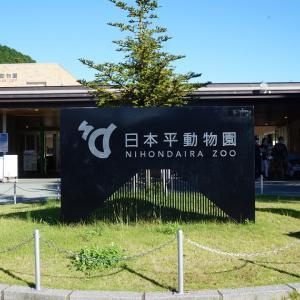2020秋、静岡市立日本平動物園
